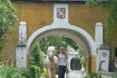 Stutenstall im Burghof