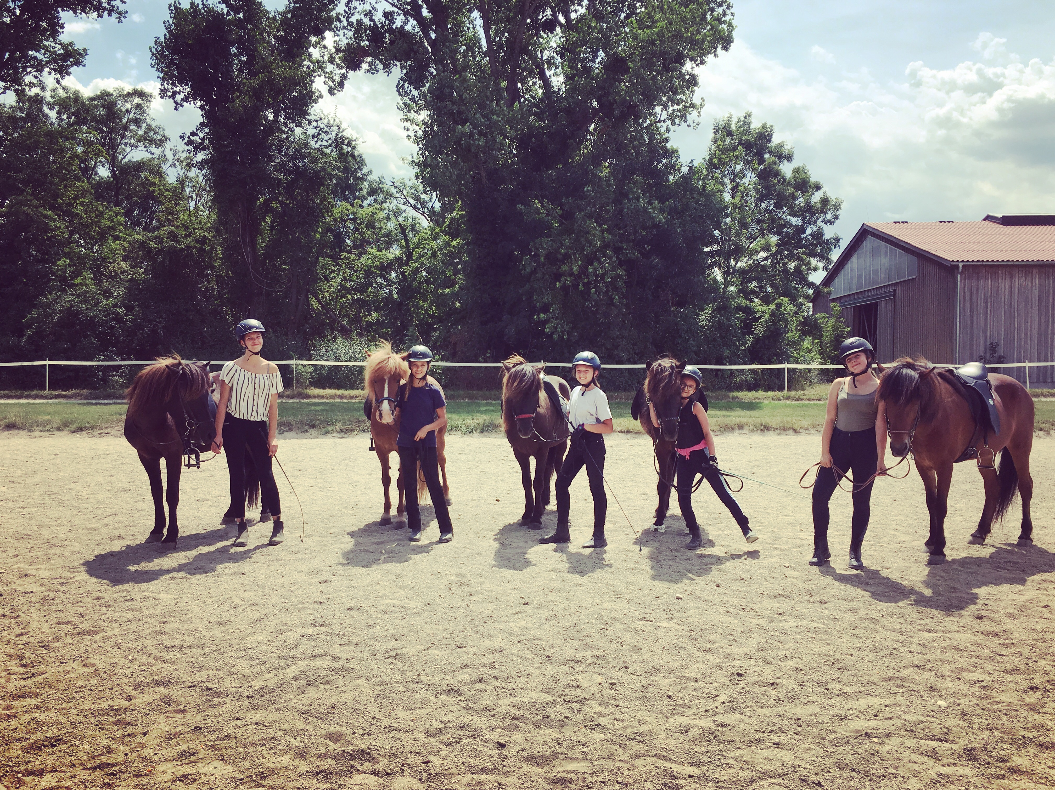 Pferdetausch