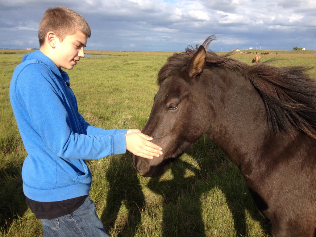 Ragnar mit Dásemd in Island