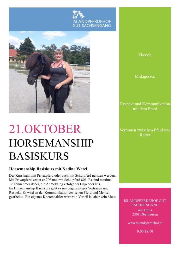 Horsemanship Basiskurs